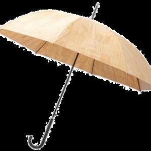 Tall Umbrella B 1