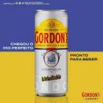 Gin Tónico em Lata Gordon Welwitchia 330ml